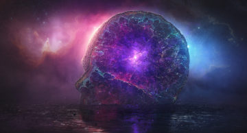 cosmo golova