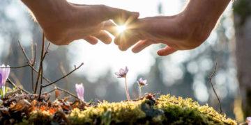 целительский-сеанс-и-его-этапы-исцеление-космоэнергетика